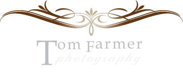Blog - Tom Farmer Photography